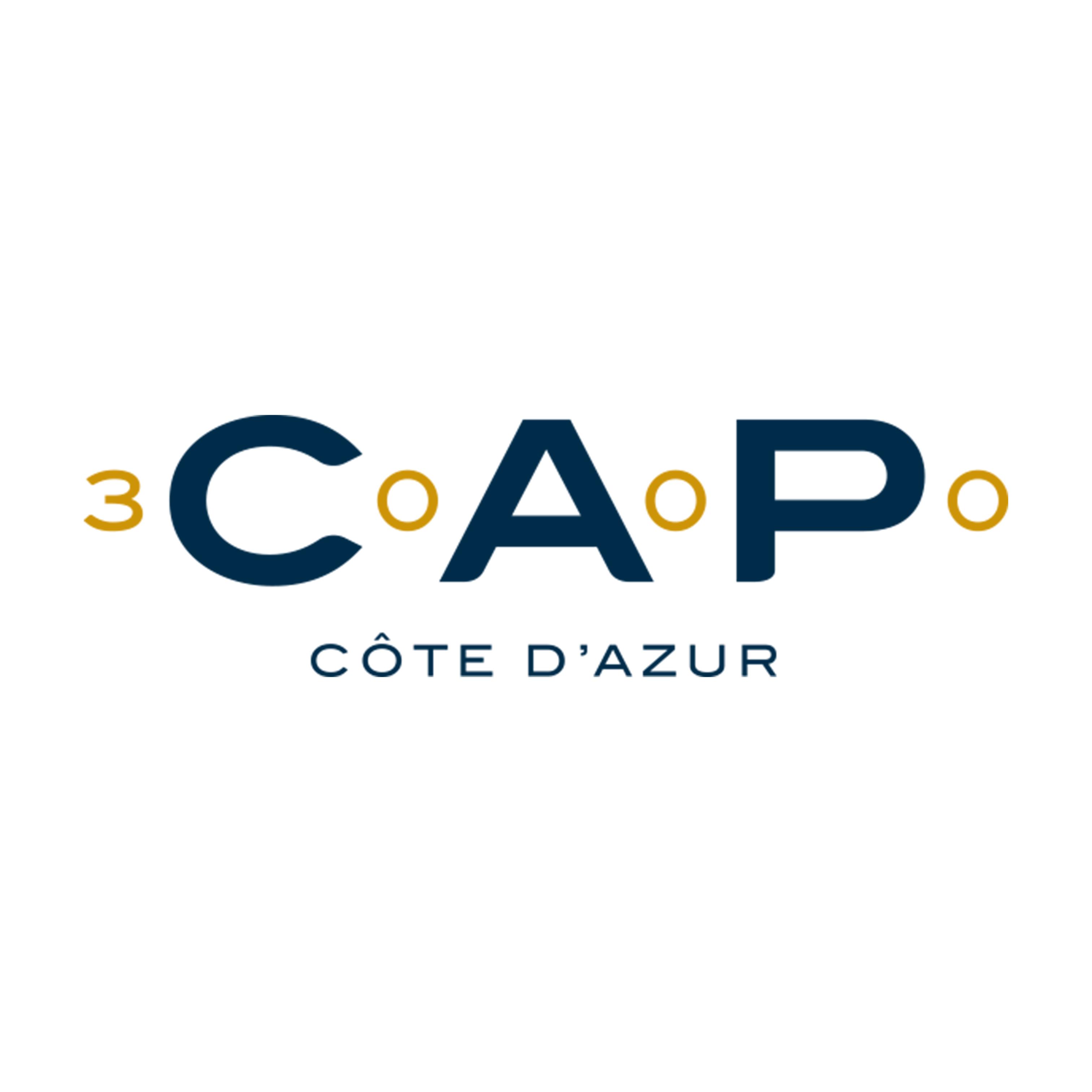 cap-3000-logo